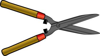Heckenschere zum Thuja Hecke schneiden